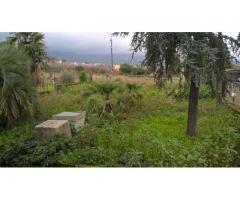 Villa singola con giardino zona via Aldo Moro