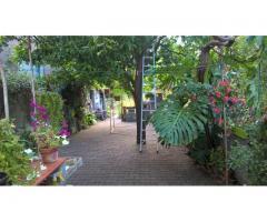 Santa Venerina stabile singolo in centro pluripiano con giardino