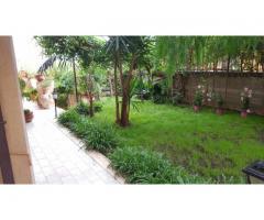 Bel villino pluripiano nuovo e con bel giardino