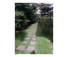 Bel villino con grandi spazi e giardino