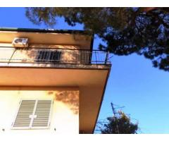 Villa singola tripiano  con 1000 mq di giardino anche divisibile