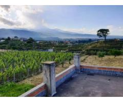 Villino singolo con giardino da rifinire