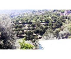 Villa con gran giardino a Giarre frazione