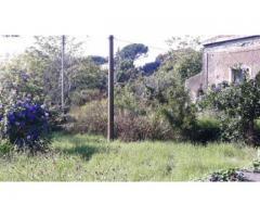 Rustico a piano terra con giardino pressi casello autostradale
