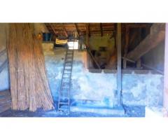 Terreno agricolopanoramico con fabbricato e palmento da restaurare