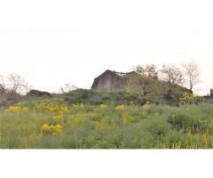 Etna Rustici panoramici con 30.000 mq di terreno