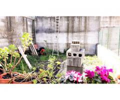 Singola a piano terra pari al nuovo con corte e giardino