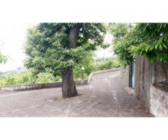 Sant'Alfio terreno di 11000 mq con doppio caseggiato